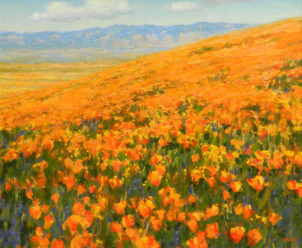 Gregory Hull - Wild Poppies