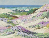 Carl Sammons - Wild Flowers-Pacific Grove, California