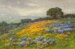 William Franklin Jackson - Poppies and Lupine