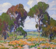 Paul Lauritz - California Poppies