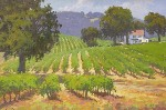 John Cosby - Wine Country
